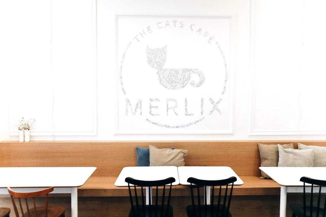 Merlix Cats café