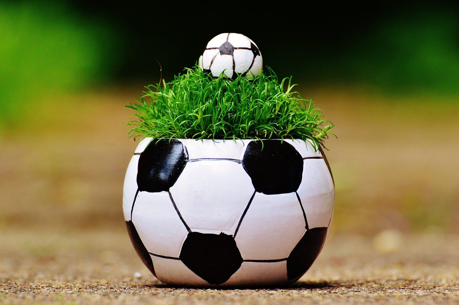 Coupe du monde à Liège
