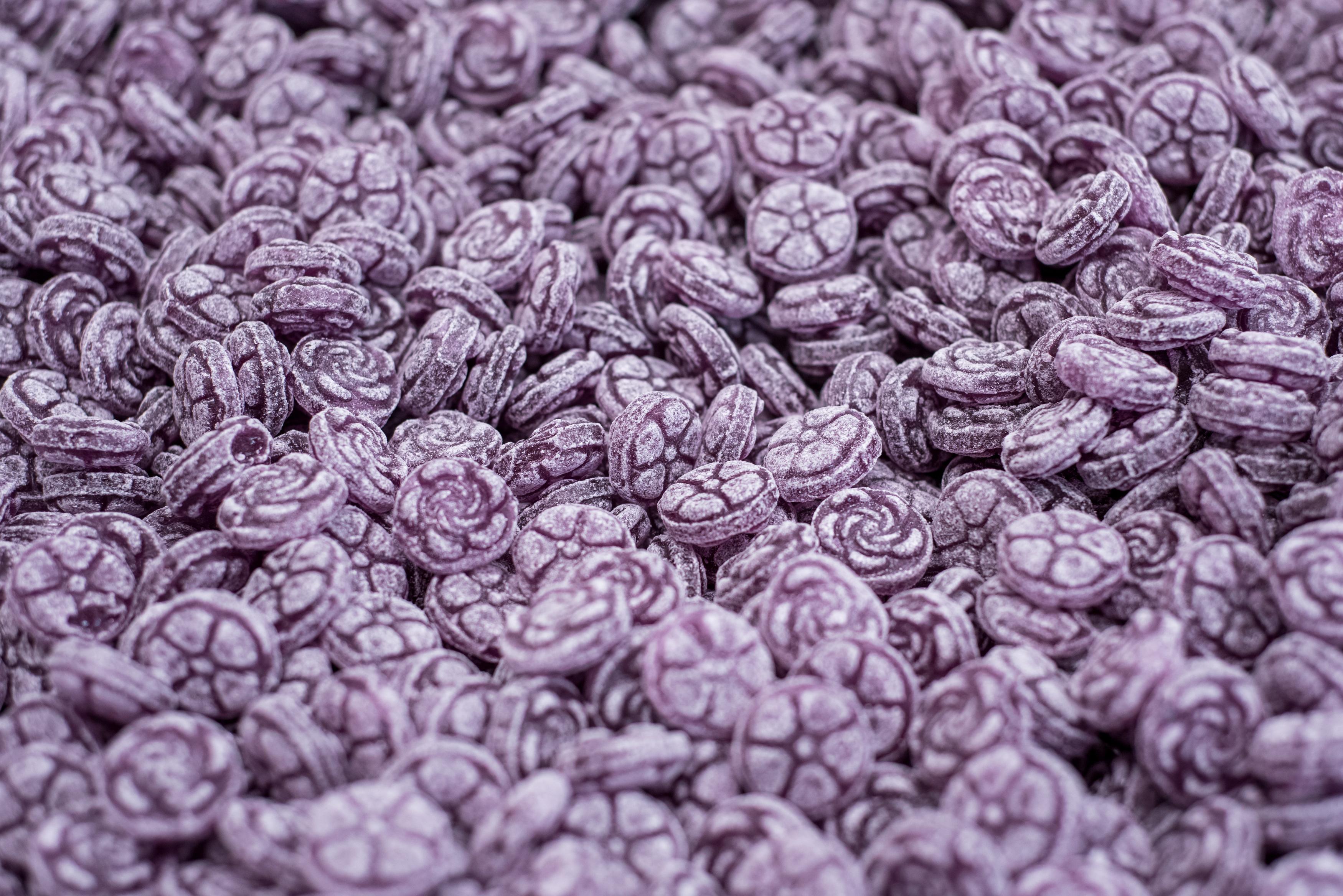 Les violettes Gicopa - DR