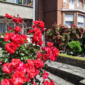 Liège met le patrimoine et les Liégeoises à l'honneur - Canva DR Boulettes Magazine